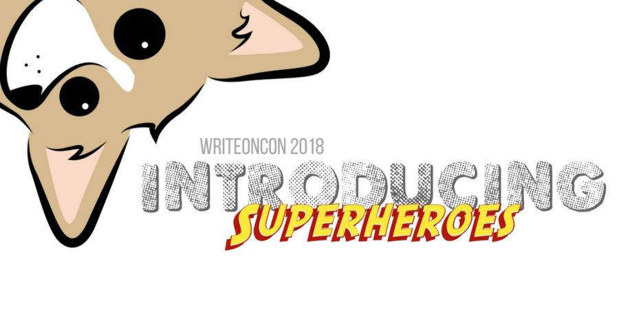 Introducing: Our 2018 Superheroes!