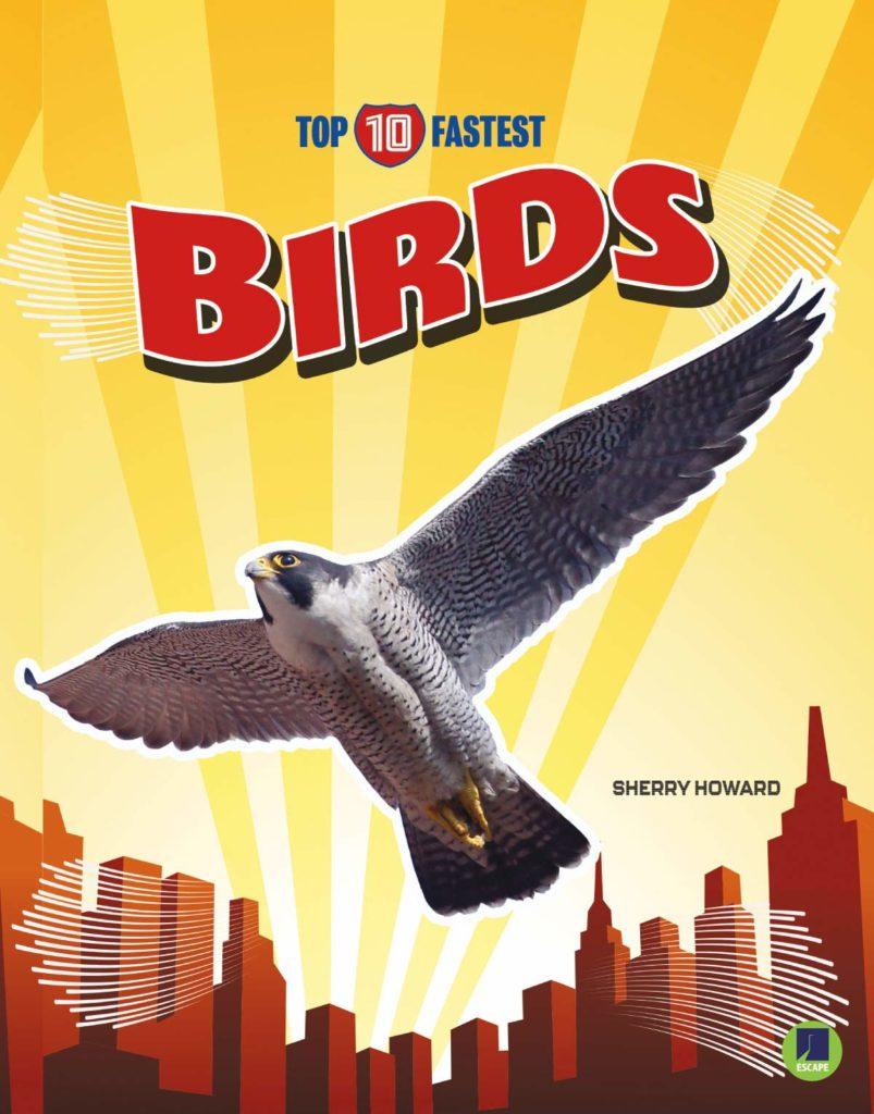 Top 10 Fastest: Birds