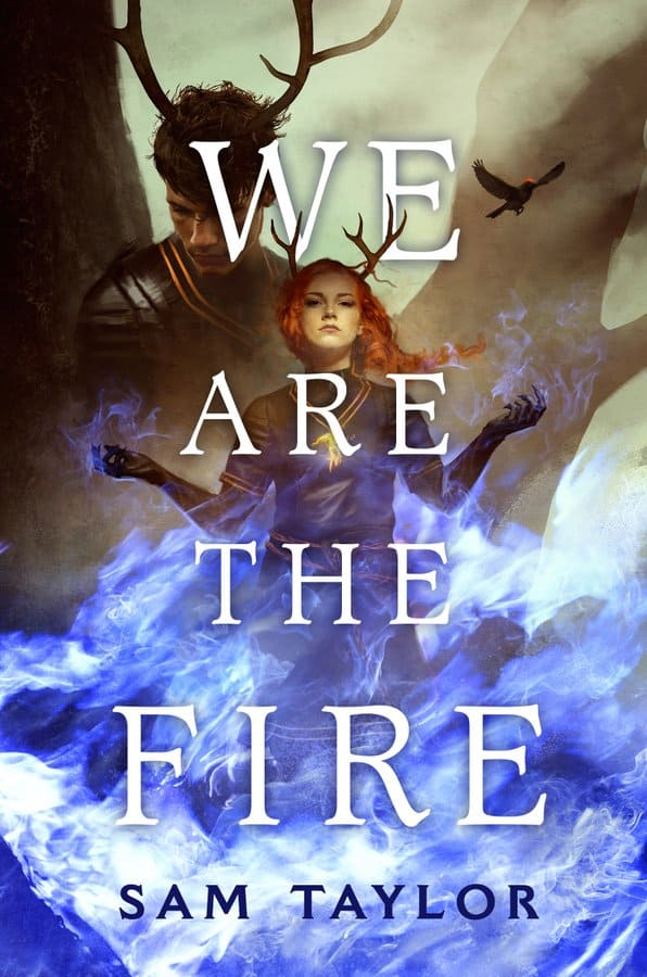 We Are the Fire by Sam Taylor